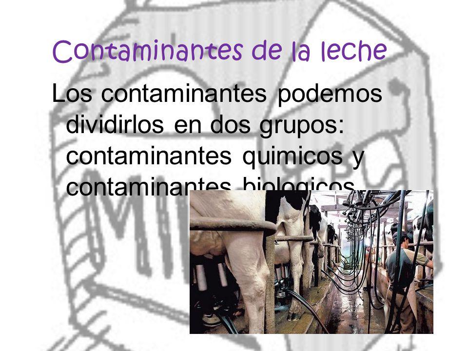 Contaminantes de la leche Los contaminantes podemos dividirlos en dos grupos: contaminantes quimicos y contaminantes biologicos.
