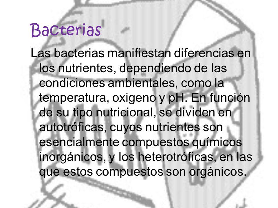 Bacterias Las bacterias manifiestan diferencias en los nutrientes, dependiendo de las condiciones ambientales, como la temperatura, oxigeno y pH. En f