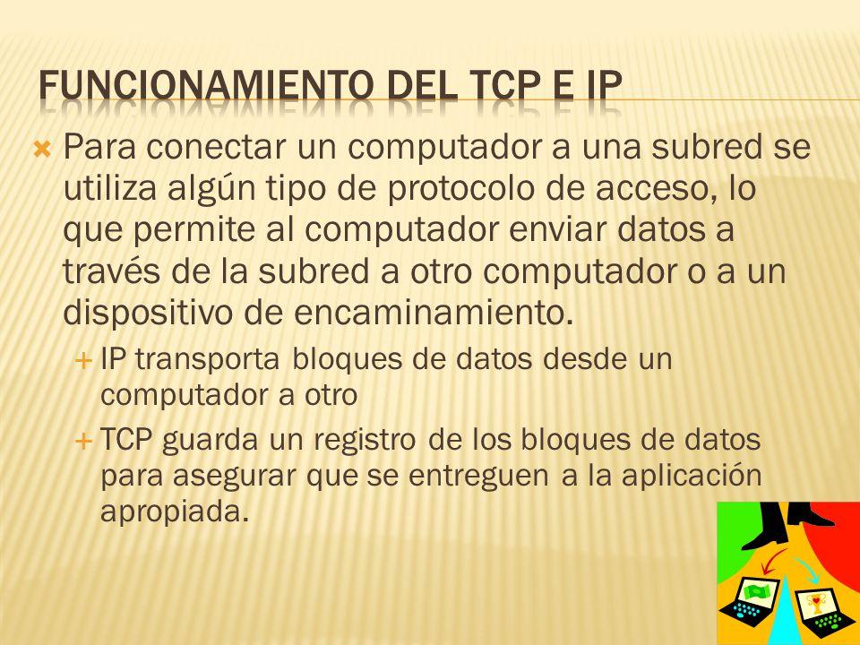Para conectar un computador a una subred se utiliza algún tipo de protocolo de acceso, lo que permite al computador enviar datos a través de la subred a otro computador o a un dispositivo de encaminamiento.
