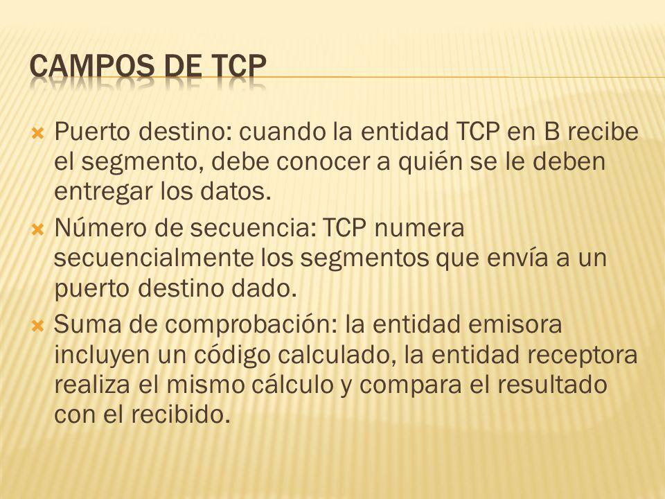 Puerto destino: cuando la entidad TCP en B recibe el segmento, debe conocer a quién se le deben entregar los datos.