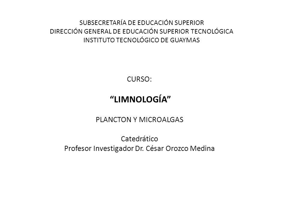 SUBSECRETARÍA DE EDUCACIÓN SUPERIOR DIRECCIÓN GENERAL DE EDUCACIÓN SUPERIOR TECNOLÓGICA INSTITUTO TECNOLÓGICO DE GUAYMAS CURSO: LIMNOLOGÍA PLANCTON Y