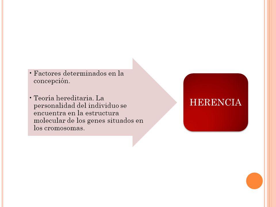 Factores determinados en la concepción. Teoría hereditaria. La personalidad del individuo se encuentra en la estructura molecular de los genes situado
