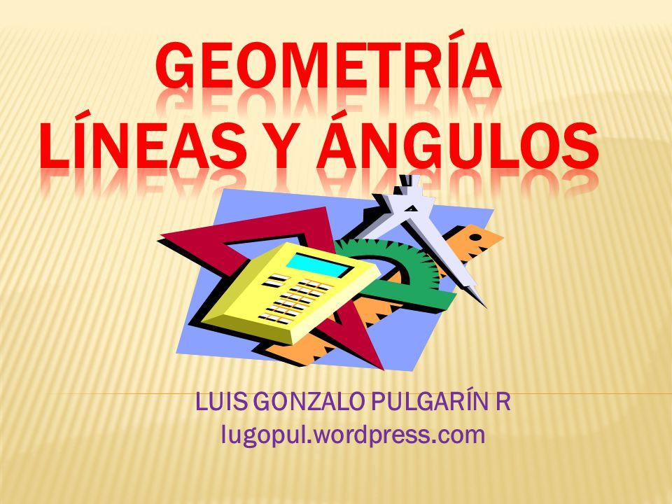 LUIS GONZALO PULGARÍN R lugopul.wordpress.com