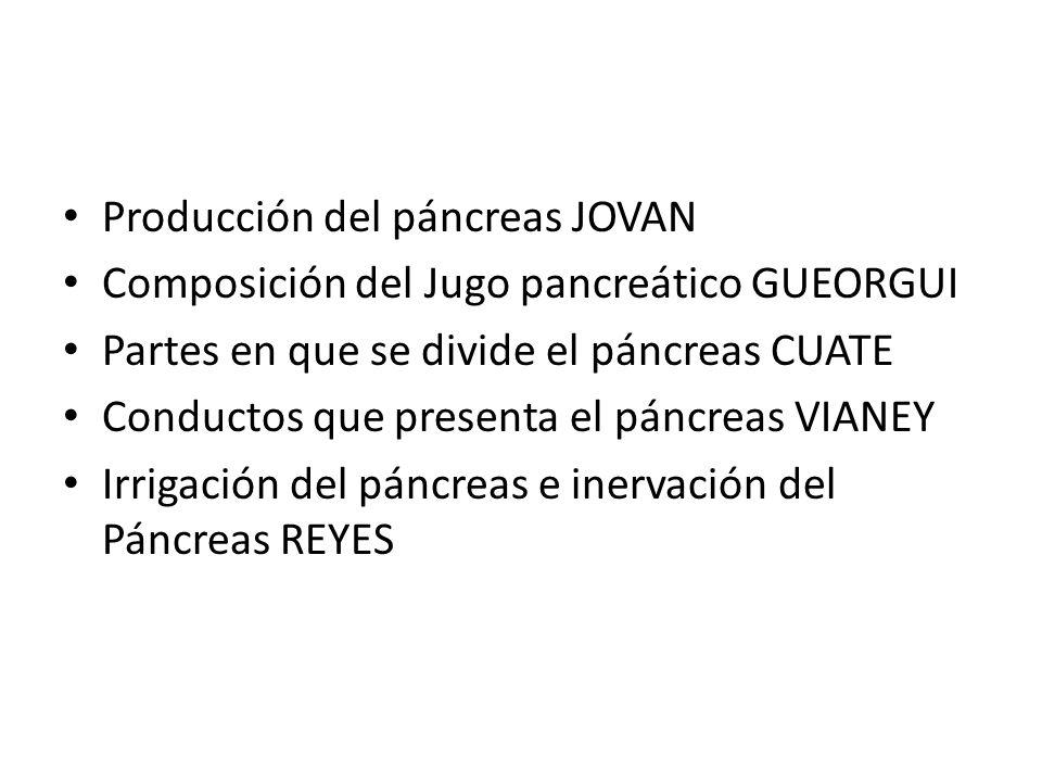 Producción del páncreas JOVAN Composición del Jugo pancreático GUEORGUI Partes en que se divide el páncreas CUATE Conductos que presenta el páncreas V