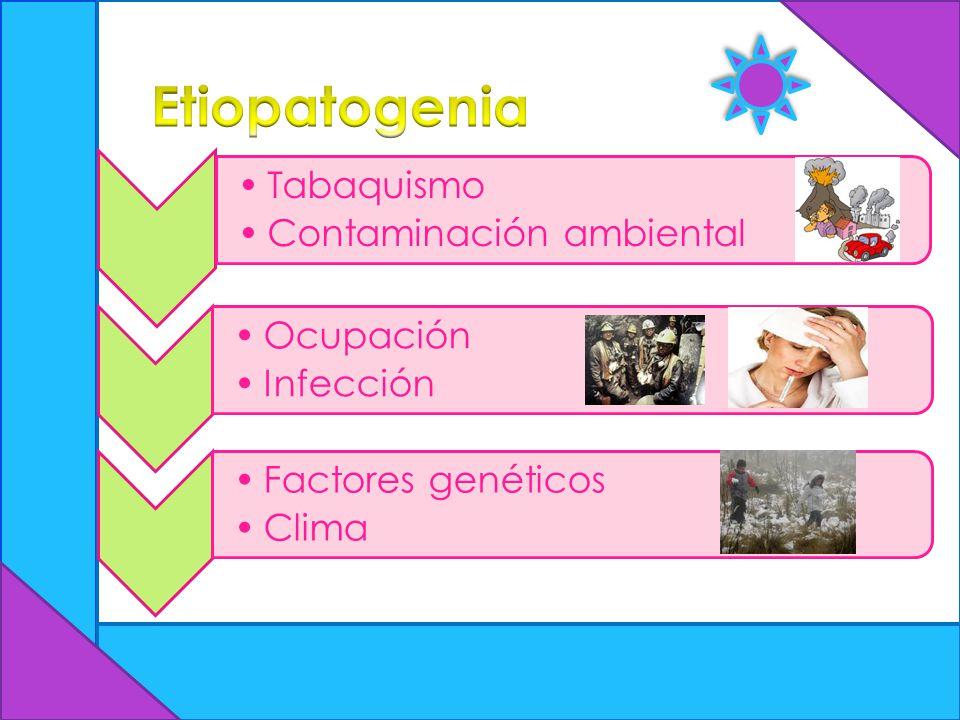 Tabaquismo Contaminación ambiental Ocupación Infección Factores genéticos Clima