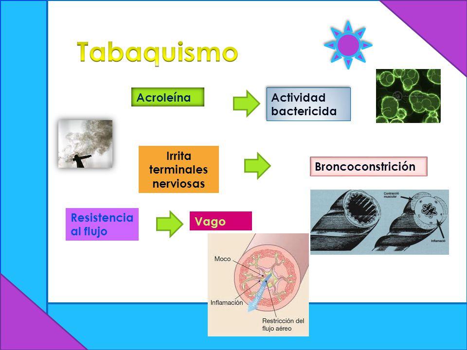 Acroleína Actividad bactericida Irrita terminales nerviosas Broncoconstrición Resistencia al flujo Vago
