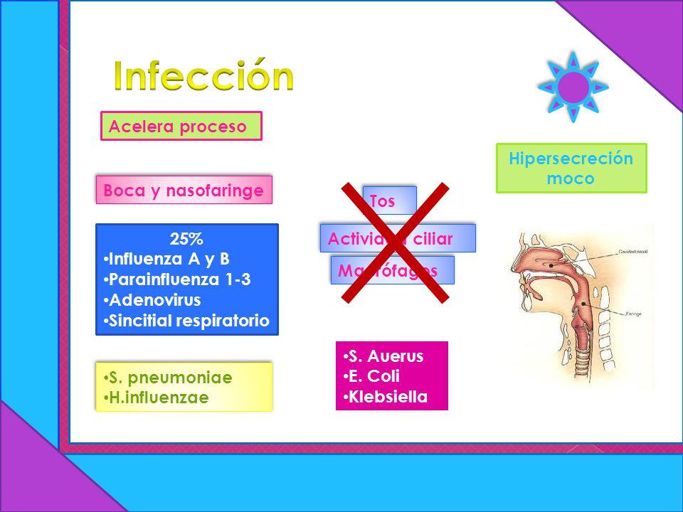 Acelera proceso Boca y nasofaringe Tos Actividad ciliar Macrófagos Hipersecreción moco 25% Influenza A y B Parainfluenza 1-3 Adenovirus Sincitial resp