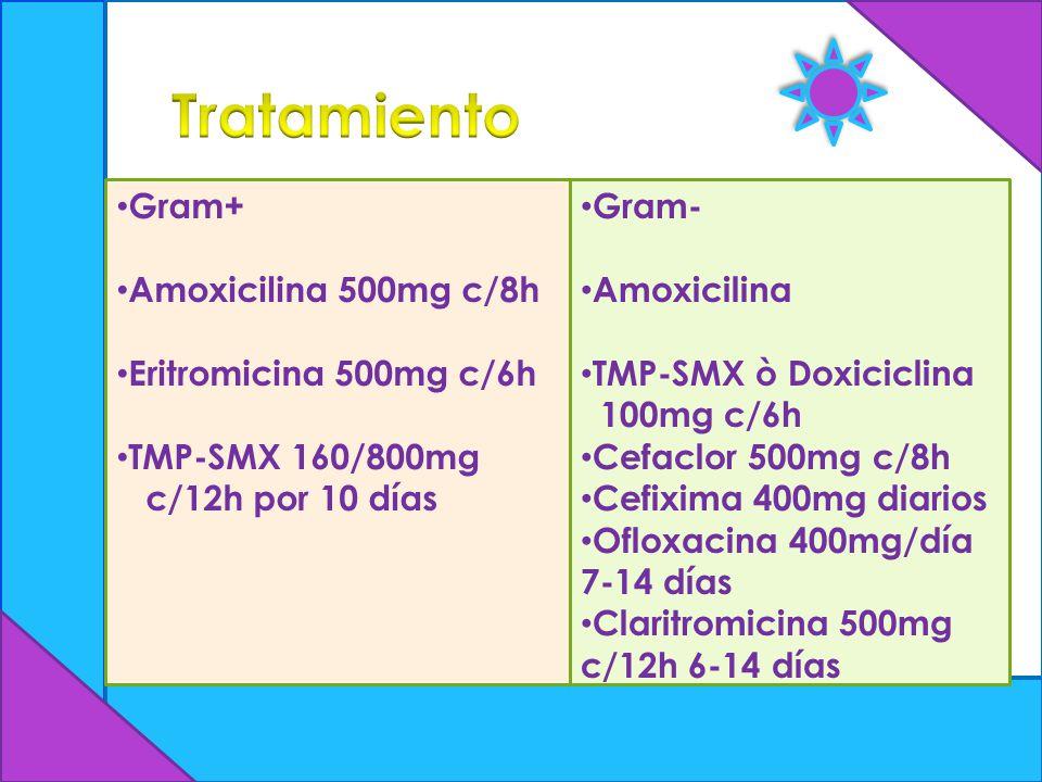 Gram+ Amoxicilina 500mg c/8h Eritromicina 500mg c/6h TMP-SMX 160/800mg c/12h por 10 días Gram- Amoxicilina TMP-SMX ò Doxiciclina 100mg c/6h Cefaclor 5