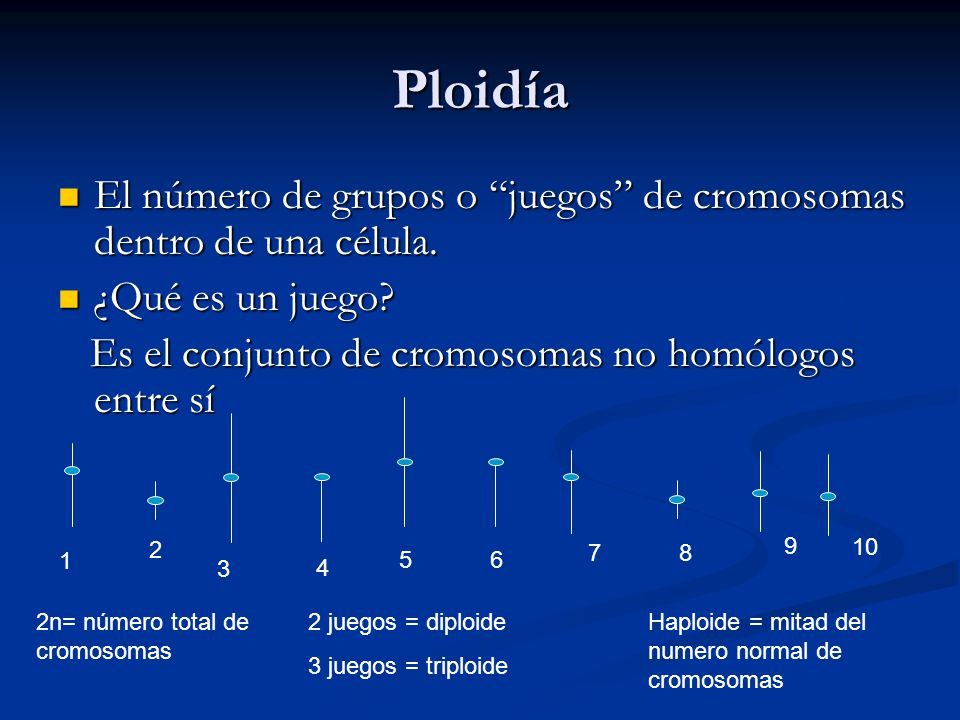 Ploidía El número de grupos o juegos de cromosomas dentro de una célula.