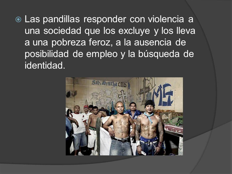 Las pandillas responder con violencia a una sociedad que los excluye y los lleva a una pobreza feroz, a la ausencia de posibilidad de empleo y la búsq