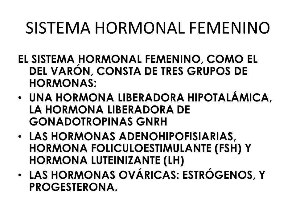SISTEMA HORMONAL FEMENINO EL SISTEMA HORMONAL FEMENINO, COMO EL DEL VARÓN, CONSTA DE TRES GRUPOS DE HORMONAS: UNA HORMONA LIBERADORA HIPOTALÁMICA, LA HORMONA LIBERADORA DE GONADOTROPINAS GNRH LAS HORMONAS ADENOHIPOFISIARIAS, HORMONA FOLICULOESTIMULANTE (FSH) Y HORMONA LUTEINIZANTE (LH) LAS HORMONAS OVÁRICAS: ESTRÓGENOS, Y PROGESTERONA.