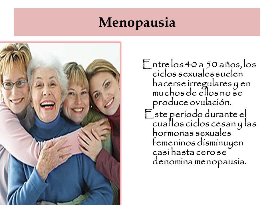 Menopausia Entre los 40 a 50 años, los ciclos sexuales suelen hacerse irregulares y en muchos de ellos no se produce ovulación.