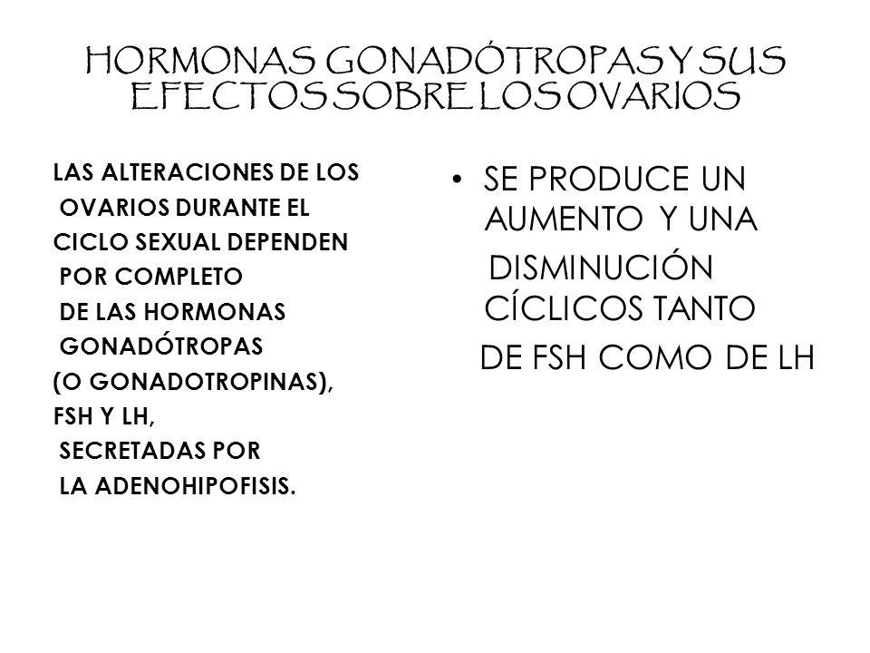 HORMONAS GONADÓTROPAS Y SUS EFECTOS SOBRE LOS OVARIOS LAS ALTERACIONES DE LOS OVARIOS DURANTE EL CICLO SEXUAL DEPENDEN POR COMPLETO DE LAS HORMONAS GONADÓTROPAS (O GONADOTROPINAS), FSH Y LH, SECRETADAS POR LA ADENOHIPOFISIS.