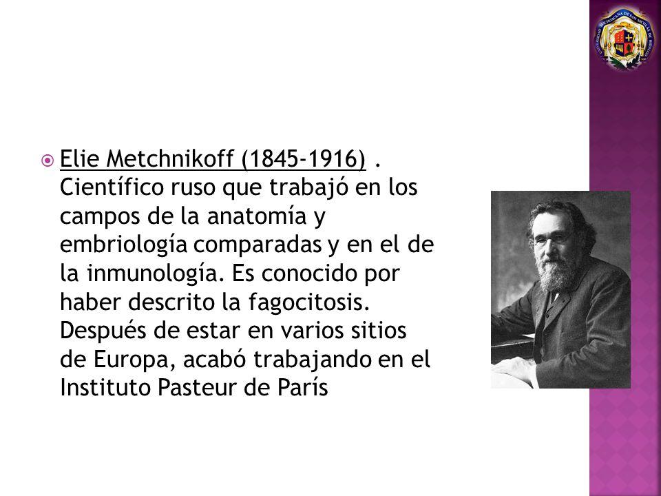 Elie Metchnikoff (1845-1916). Científico ruso que trabajó en los campos de la anatomía y embriología comparadas y en el de la inmunología. Es conocido