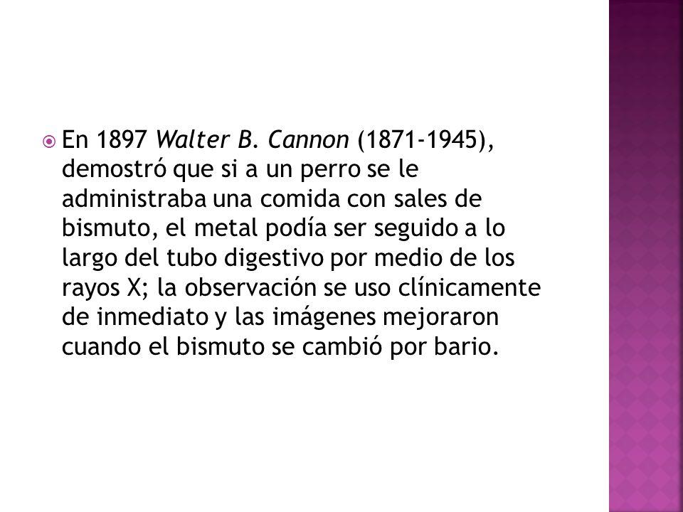 En 1897 Walter B. Cannon (1871-1945), demostró que si a un perro se le administraba una comida con sales de bismuto, el metal podía ser seguido a lo l
