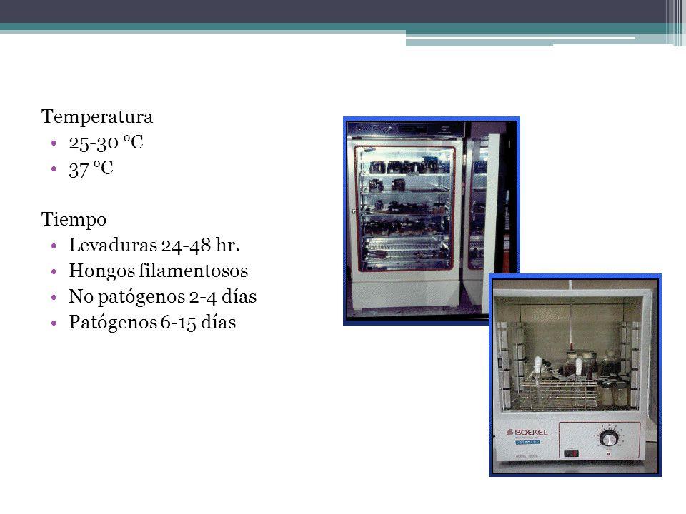 Temperatura 25-30 °C 37 °C Tiempo Levaduras 24-48 hr. Hongos filamentosos No patógenos 2-4 días Patógenos 6-15 días