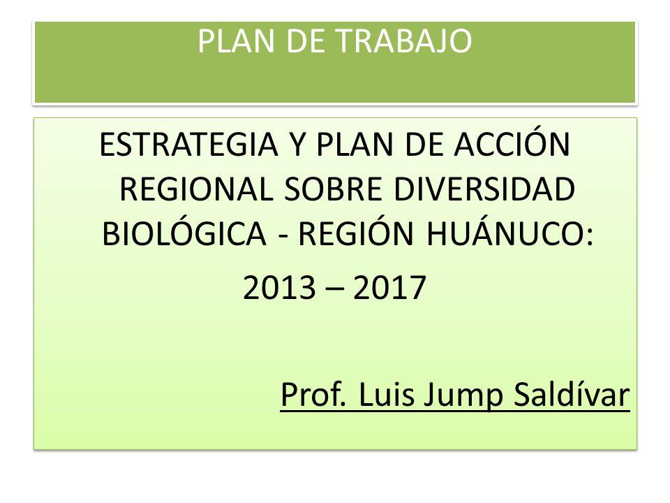 PLAN DE TRABAJO ESTRATEGIA Y PLAN DE ACCIÓN REGIONAL SOBRE DIVERSIDAD BIOLÓGICA - REGIÓN HUÁNUCO: 2013 – 2017 Prof. Luis Jump Saldívar ESTRATEGIA Y PL