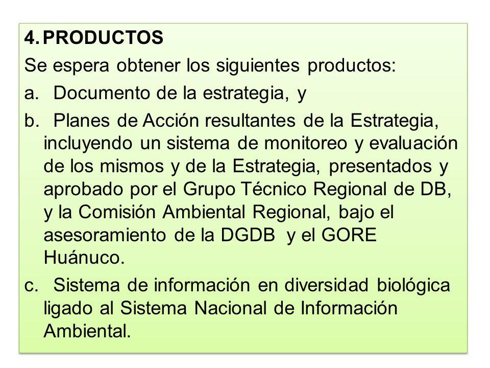 4.PRODUCTOS Se espera obtener los siguientes productos: a.Documento de la estrategia, y b.Planes de Acción resultantes de la Estrategia, incluyendo un