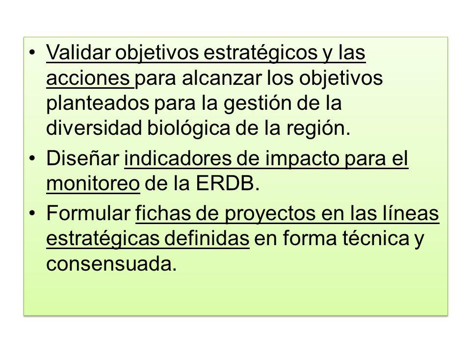Validar objetivos estratégicos y las acciones para alcanzar los objetivos planteados para la gestión de la diversidad biológica de la región. Diseñar