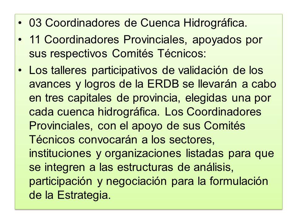 03 Coordinadores de Cuenca Hidrográfica. 11 Coordinadores Provinciales, apoyados por sus respectivos Comités Técnicos: Los talleres participativos de