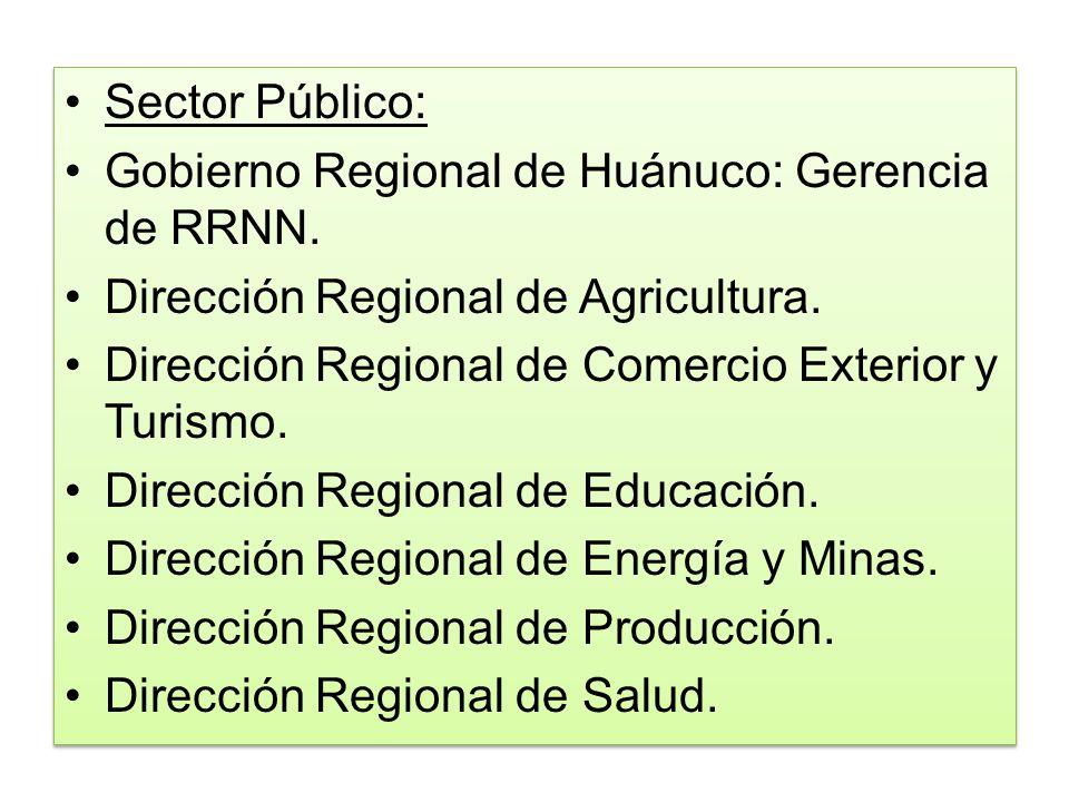 Sector Público: Gobierno Regional de Huánuco: Gerencia de RRNN. Dirección Regional de Agricultura. Dirección Regional de Comercio Exterior y Turismo.
