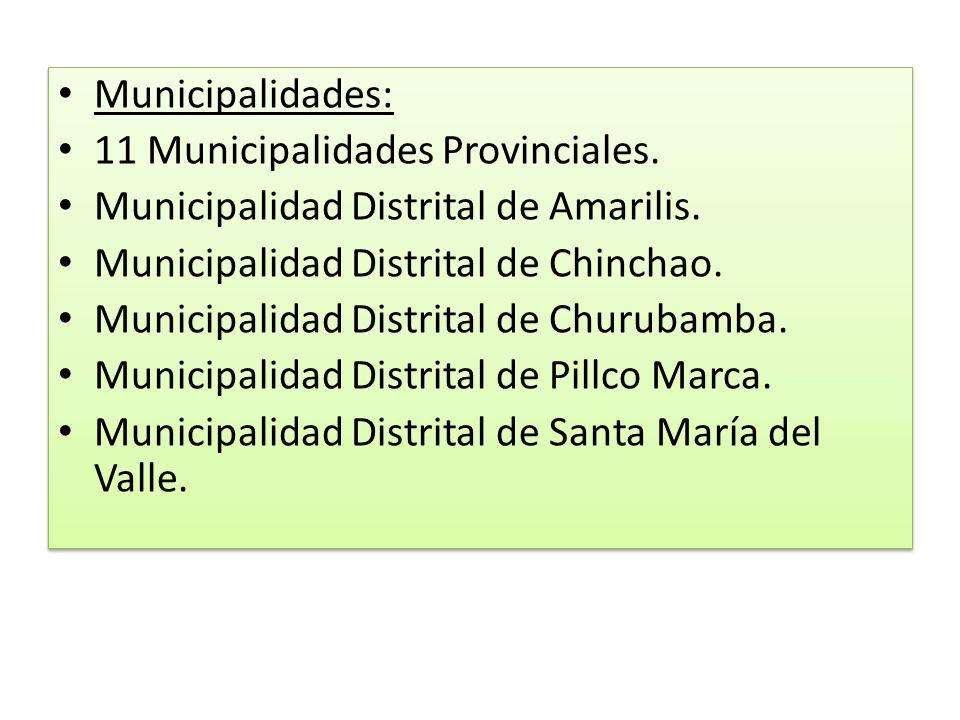 Municipalidades: 11 Municipalidades Provinciales. Municipalidad Distrital de Amarilis. Municipalidad Distrital de Chinchao. Municipalidad Distrital de