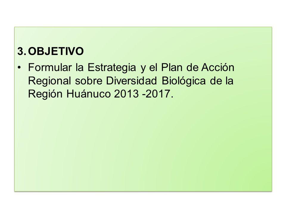 3.OBJETIVO Formular la Estrategia y el Plan de Acción Regional sobre Diversidad Biológica de la Región Huánuco 2013 -2017. 3.OBJETIVO Formular la Estr