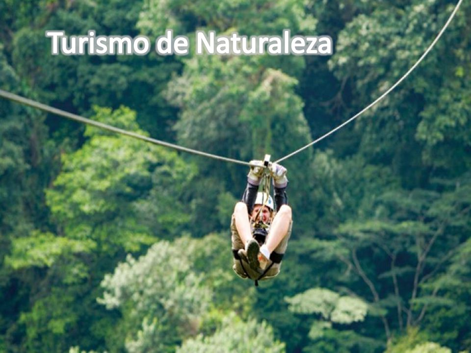 Colombia Existe política PNN (Parques Nacionales Naturales) Inclusión del Turismo Comunitario Bolivia No hay política (SERNAP) Servicio Nacional de Áreas Protegidas Inclusión del Turismo Comunitario