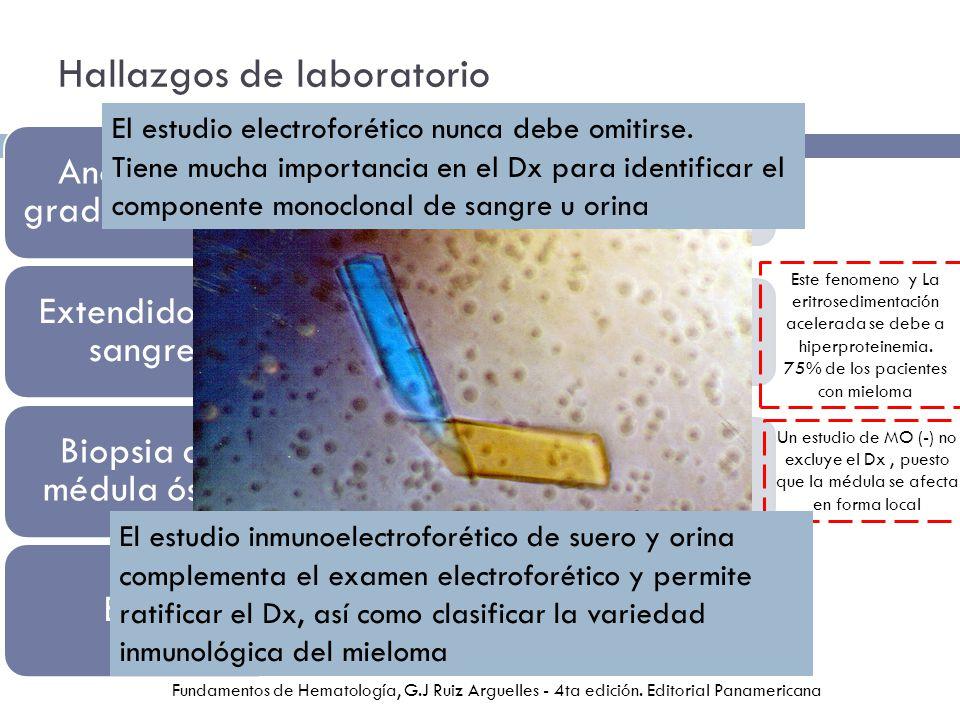 Hallazgos de laboratorio Normocítica Normocrómica Anemia de grado variable Tendencia de los eritrocitos a agruparse en pilas de moneda o rouleaux Linfocitos inmaduros y células plasmáticas anormales > 2,ooo x mm 3 - leucemia de células plasmáticas Extendido de sangre Infiltración de celulas plasmaticas > 15% de apariencia maligna (multinucleadas y grandes nucleolos) Biopsia de médula ósea Proteinuria (proteína de Bence-Jones) Sedimento urinario – cilindros hialinos, células del epitelio tubular Hiperuricemia e hipercalcemia – traducen la destrucción de huesos Elevacion de nitrógeno ureico y creatinina – IR EGO Este fenomeno y La eritrosedimentación acelerada se debe a hiperproteinemia.