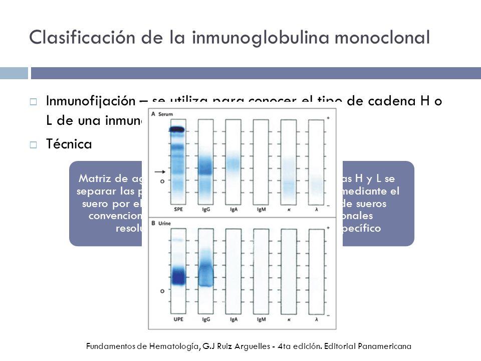 Clasificación de la inmunoglobulina monoclonal Inmunofijación – se utiliza para conocer el tipo de cadena H o L de una inmunoglobulina monoclonal Técnica Fundamentos de Hematología, G.J Ruiz Arguelles - 4ta edición.