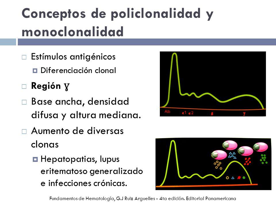 Conceptos de policlonalidad y monoclonalidad Estímulos antigénicos Diferenciación clonal Región ɣ Base ancha, densidad difusa y altura mediana. Aument