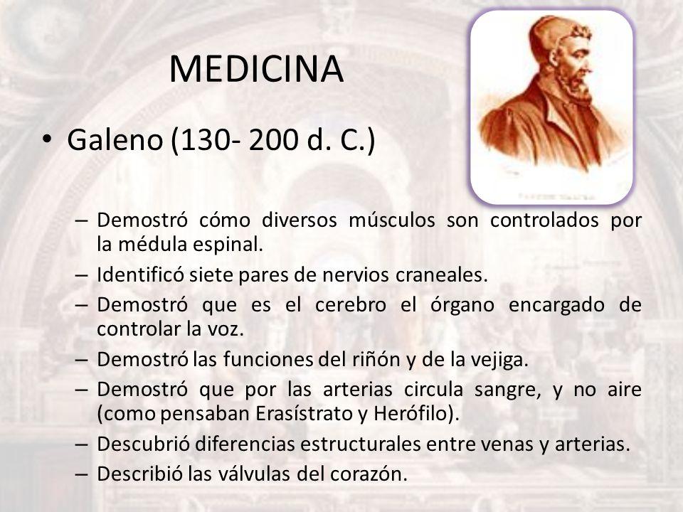 MEDICINA Galeno (130- 200 d. C.) – Demostró cómo diversos músculos son controlados por la médula espinal. – Identificó siete pares de nervios craneale