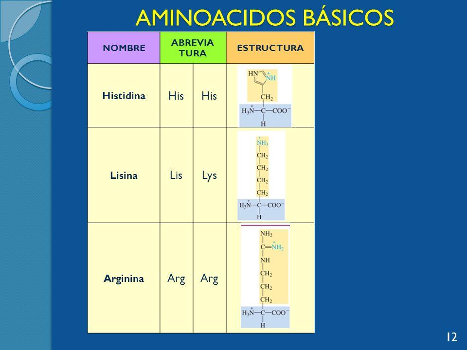 AMINOACIDOS BÁSICOS NOMBRE ABREVIA TURA ESTRUCTURA Histidina His Lisina LisLys Arginina Arg 12