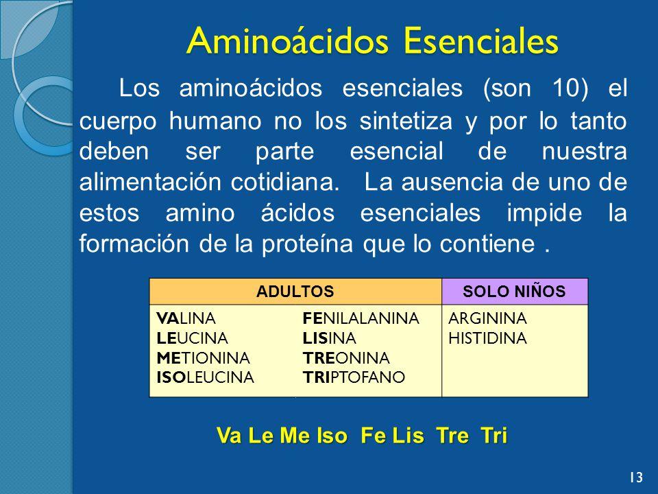Aminoácidos Esenciales Los aminoácidos esenciales (son 10) el cuerpo humano no los sintetiza y por lo tanto deben ser parte esencial de nuestra alimentación cotidiana.