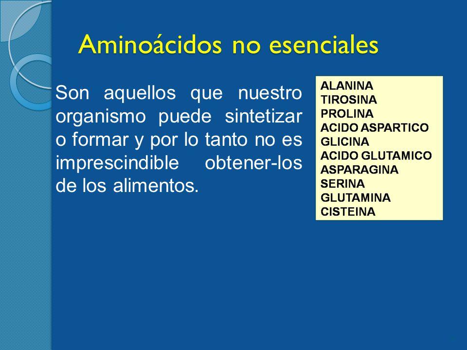 Aminoácidos no esenciales Son aquellos que nuestro organismo puede sintetizar o formar y por lo tanto no es imprescindible obtener-los de los alimentos.