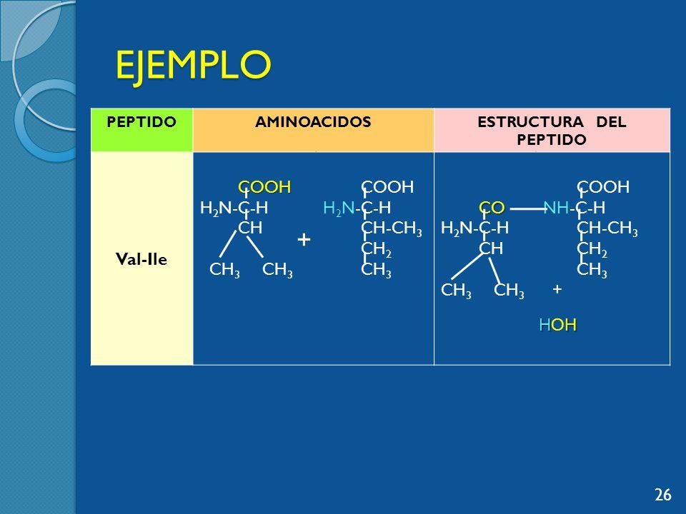 EJEMPLO PEPTIDOAMINOACIDOSESTRUCTURA DEL PEPTIDO Val-Ile COOH COOH H 2 N-C-H CH CH 3 CH 3 COOH H 2 N-C-H CH-CH 3 CH 2 CH 3 CO H 2 N-C-H CH CH 3 COOH NH-C-H CH-CH 3 CH 2 CH 3 + 26 + HHHOHHHHOH