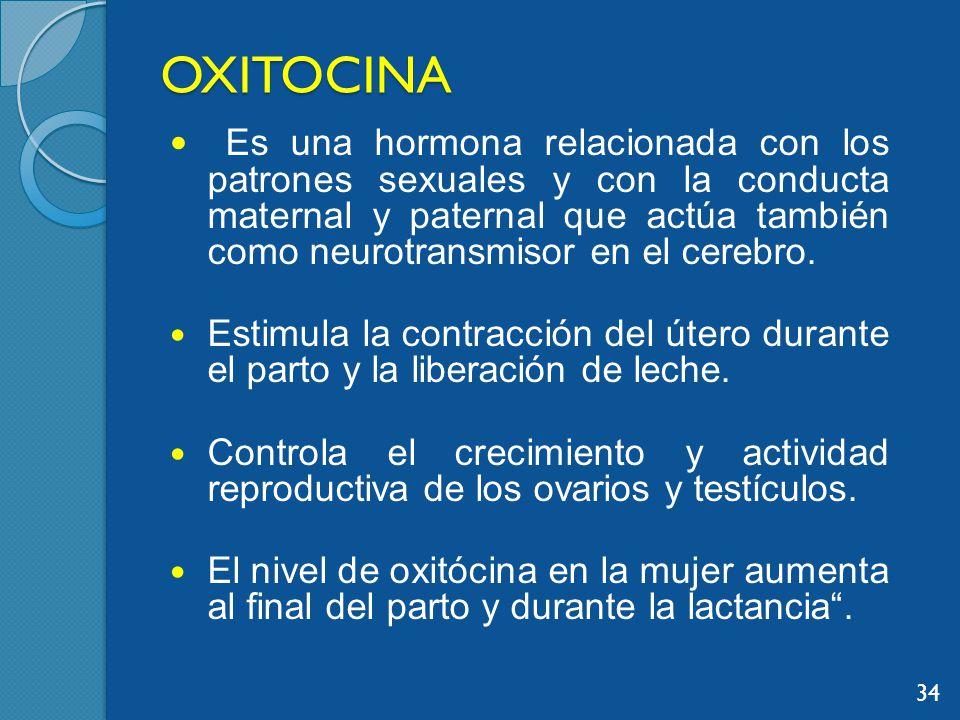 OXITOCINA Es una hormona relacionada con los patrones sexuales y con la conducta maternal y paternal que actúa también como neurotransmisor en el cerebro.