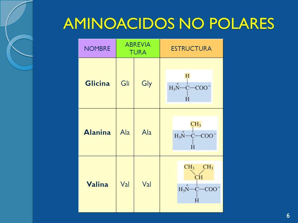 AMINOACIDOS NO POLARES NOMBRE ABREVIA TURA ESTRUCTURA GlicinaGliGly AlaninaAla ValinaVal 6