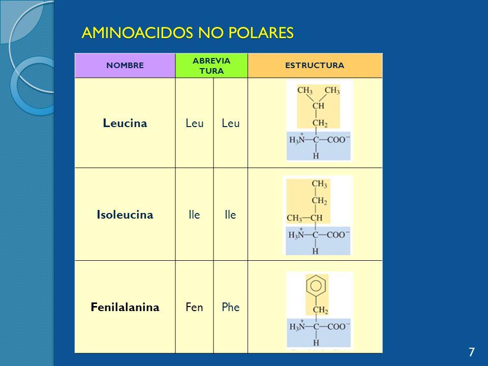 AMINOACIDOS NO POLARES NOMBRE ABREVIA TURA ESTRUCTURA LeucinaLeu IsoleucinaIle FenilalaninaFenPhe 7