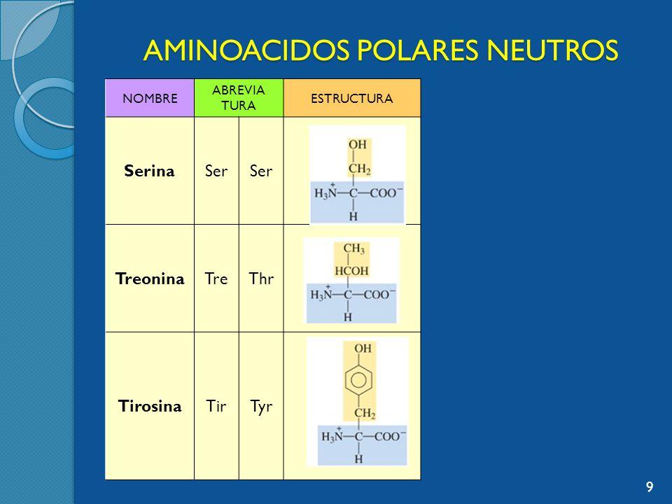 AMINOACIDOS POLARES NEUTROS NOMBRE ABREVIA TURA ESTRUCTURA CisteinaCisCys AsparaginaAsn GlutaminaGln 10