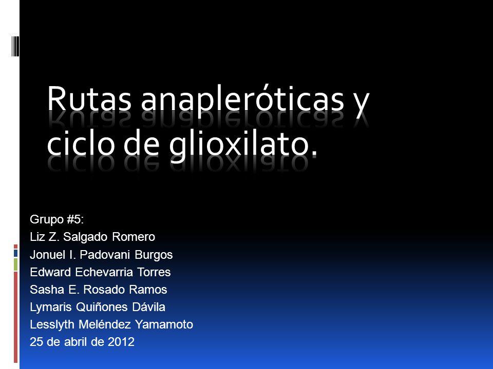 Pasos del Ciclo Glioxilato 1.