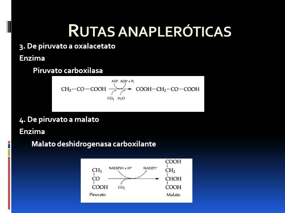 Referencias Nelson, D.L., Cox, M.M.(2008), Lehninger Principles of Biochemistry, 4ta edición, W.H.