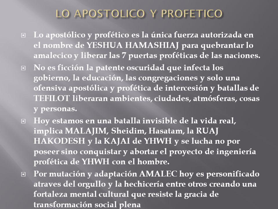 Lo apostólico y profético es la única fuerza autorizada en el nombre de YESHUA HAMASHIAJ para quebrantar lo amalecico y liberar las 7 puertas profétic