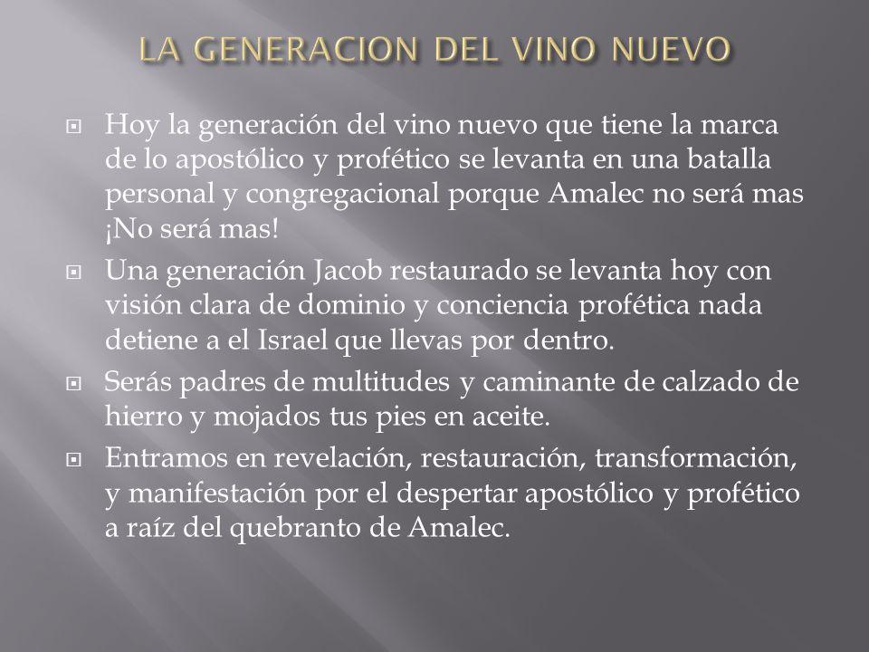 Hoy la generación del vino nuevo que tiene la marca de lo apostólico y profético se levanta en una batalla personal y congregacional porque Amalec no