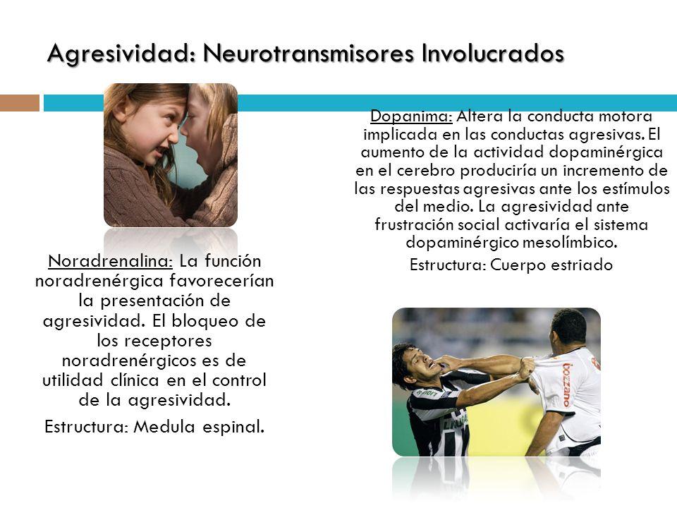 Agresividad: Neurotransmisores Involucrados Dopanima: Altera la conducta motora implicada en las conductas agresivas. El aumento de la actividad dopam