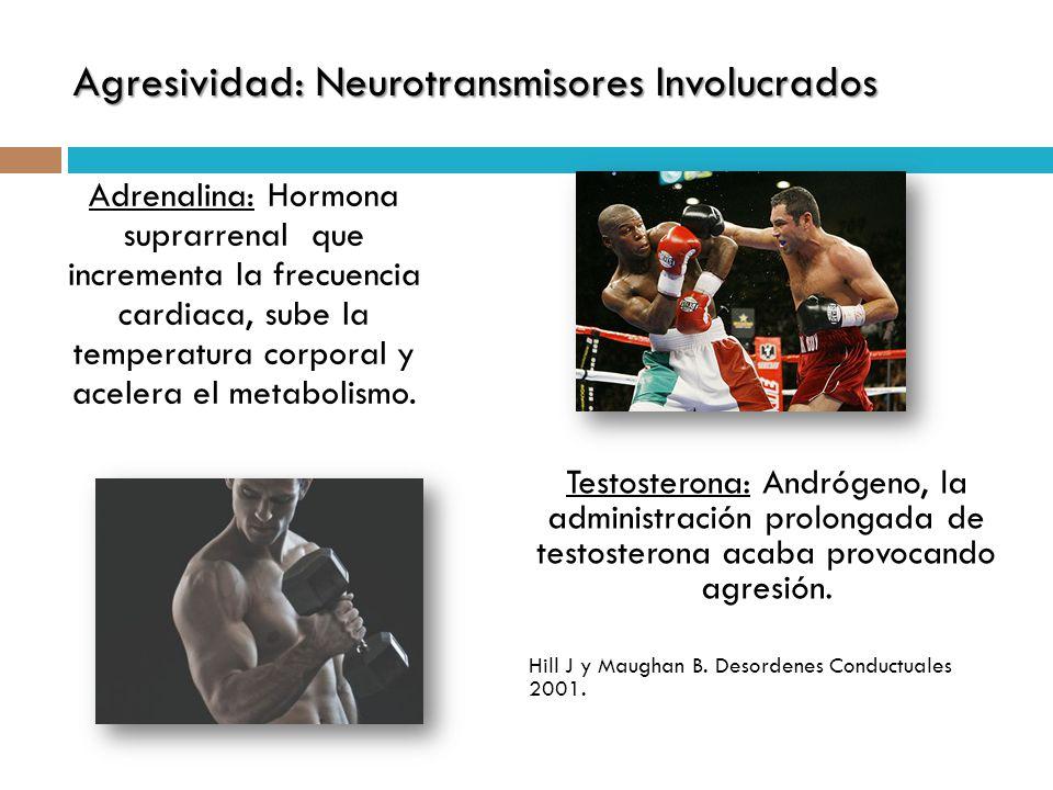 Adrenalina: Hormona suprarrenal que incrementa la frecuencia cardiaca, sube la temperatura corporal y acelera el metabolismo. Agresividad: Neurotransm