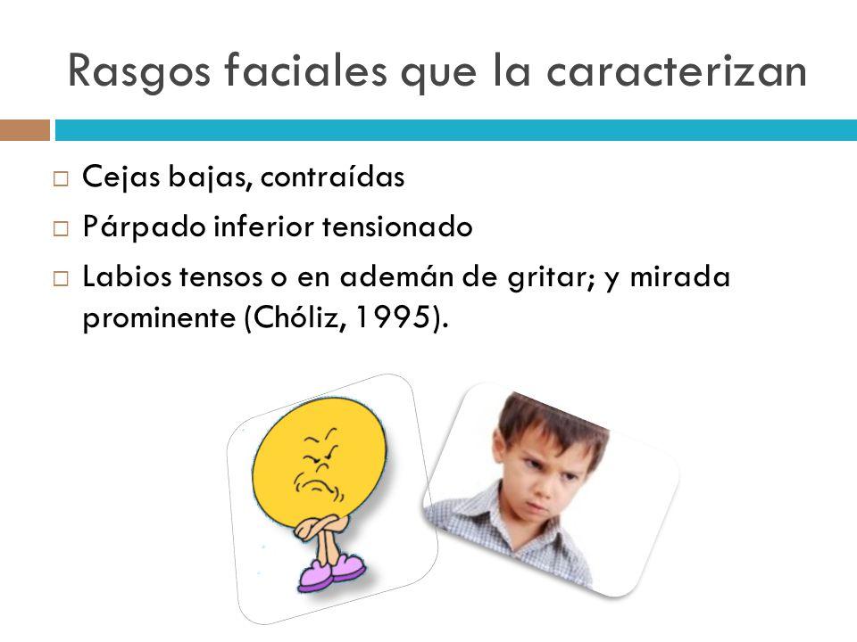 Rasgos faciales que la caracterizan Cejas bajas, contraídas Párpado inferior tensionado Labios tensos o en ademán de gritar; y mirada prominente (Chól