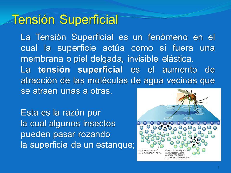 Tensión Superficial La Tensión Superficial es un fenómeno en el cual la superficie actúa como si fuera una membrana o piel delgada, invisible elástica