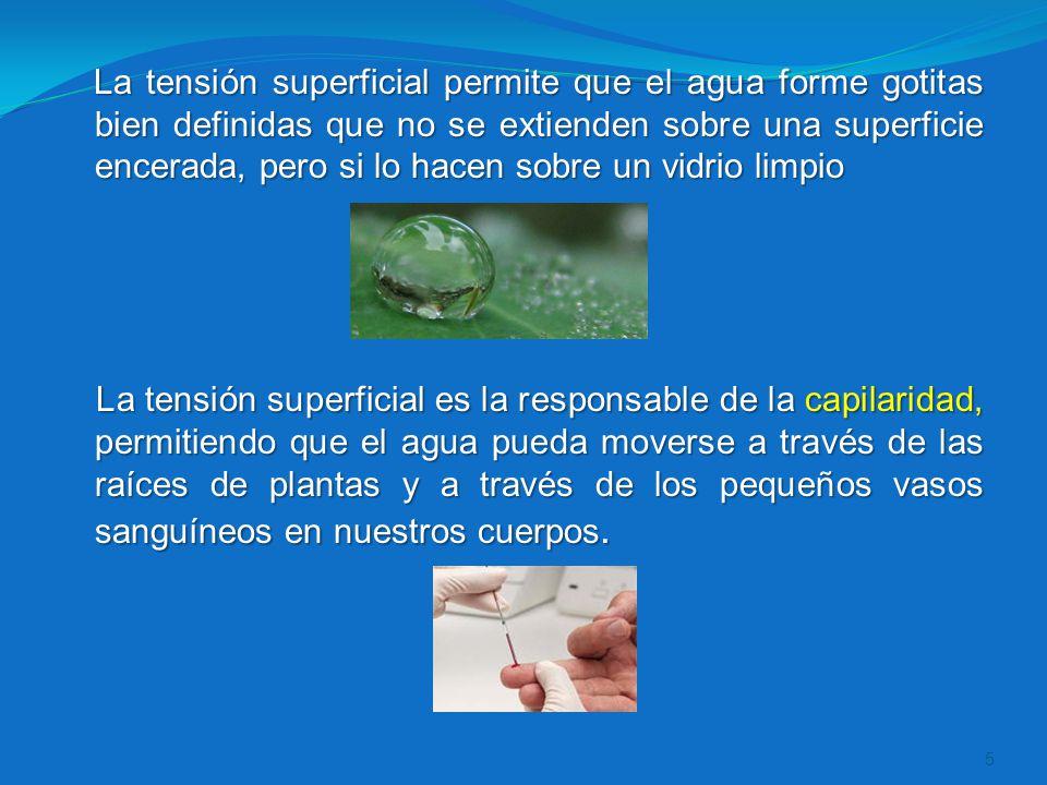 La tensión superficial permite que el agua forme gotitas bien definidas que no se extienden sobre una superficie encerada, pero si lo hacen sobre un v