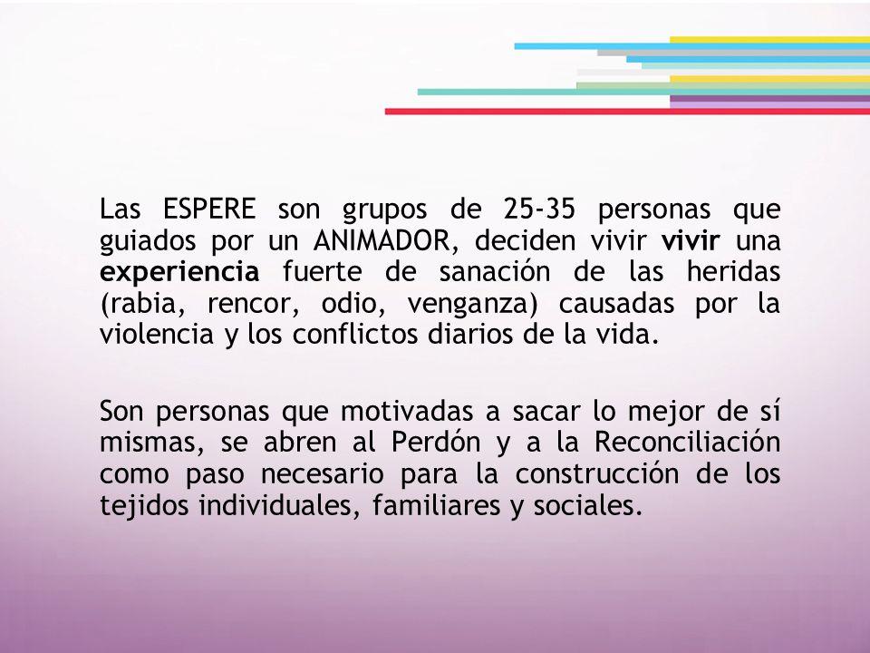 Facilitan y acompañan la experiencia que tuvieron en sus diez módulos de formación, coordinan los ESPERE con grupos de 25 a 35 personas.
